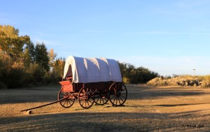 covered-wagon-8099