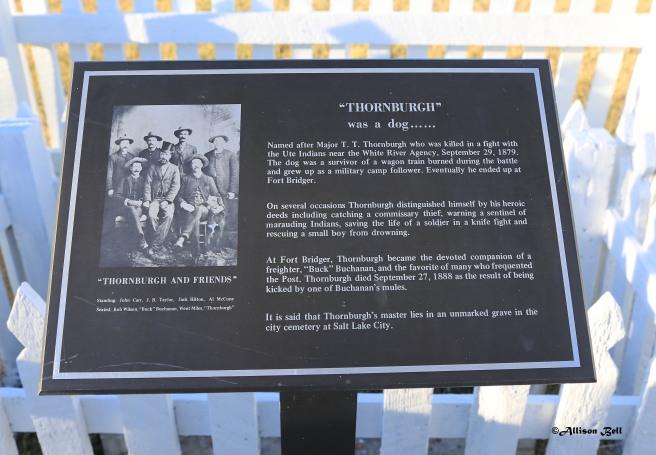 thornburgh-plaque-8081